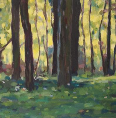 Sommerwald, Acryl auf Leinwand 40 x 40, 2014