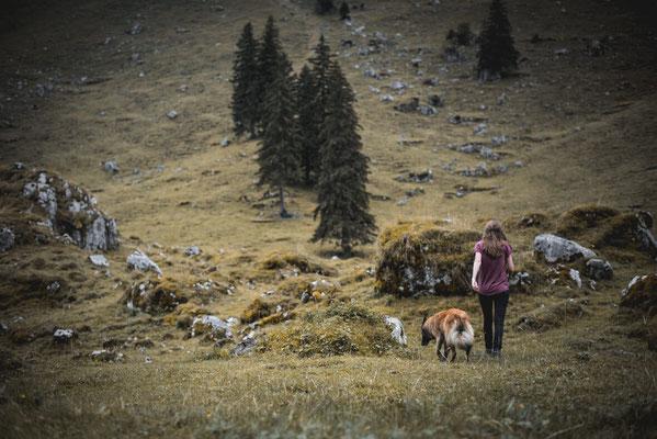 Schäferhund und Halterin in Appenzell laufen über eine Bergwiese fotografiert von der Ostschweizer Fotografin Monkeyjolie