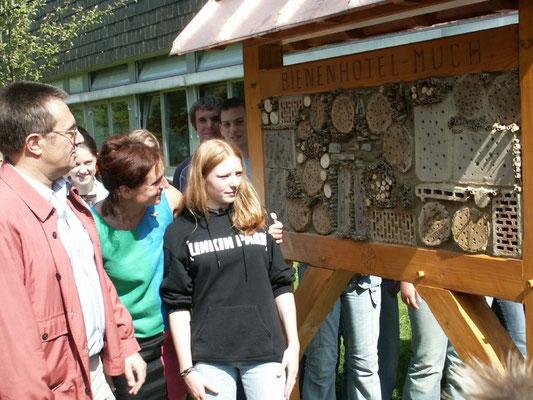 Insektenhotel gebaut