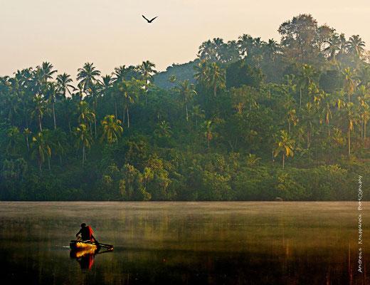 'Frühmorgens - Fischer und Adler' Kumarakanda Lagoon