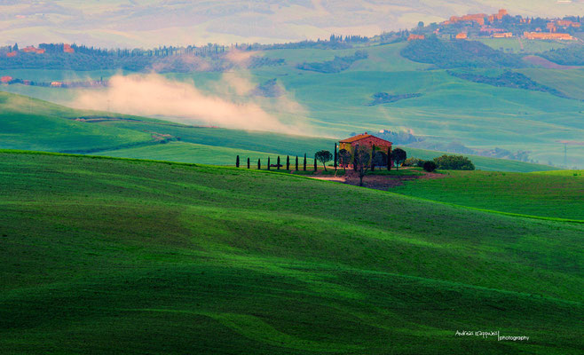 'Morgensonne im Val D'Orcia'
