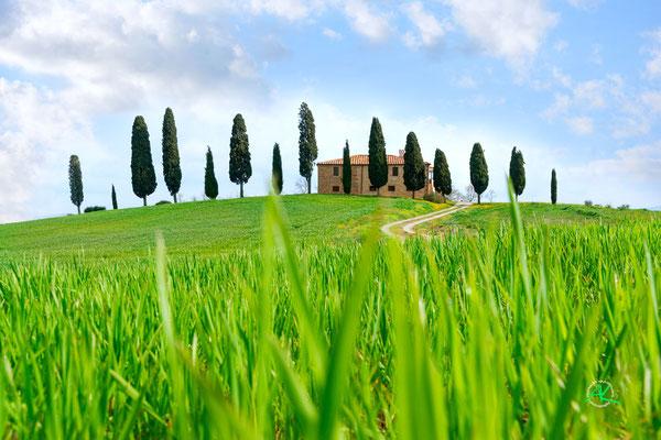 'Podere I Cipressini' Val D'Orcia, Toscana