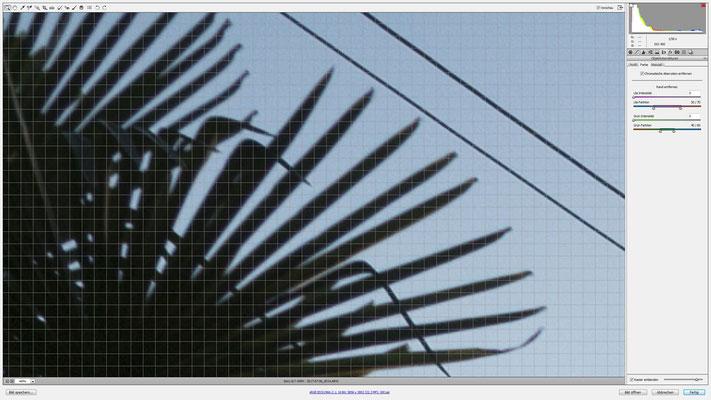 Laowa LW-FX 15mm F4.0 1:1 Wide Macro an der Sony Alpha 99