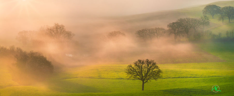 'Morgennebel im Val D'Orcia' Val D'Orcia, Toscana