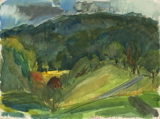 Baach bei Weiblingen, 40 cm x 30 cm, Aquarell auf Papier, 27.8.1985