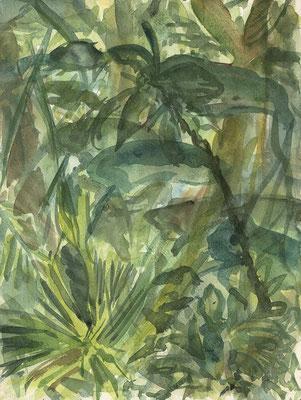 Im Botanischen Garten, München, 24 cm x 32 cm, Aquarell auf Papier, Nov. 1986
