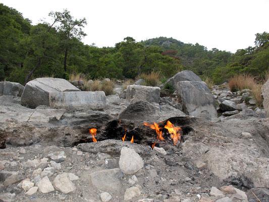 Die ewigen Feuer der feuerspeienden Chimaira bei Cirali, Türkei; 5.–18.10 2015