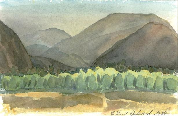 Baumwollfelder in Nasca, Peru; 29 cm x 19 cm, Aquarell auf Papier, 31.3.1984