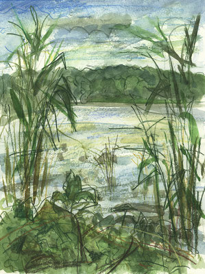 Lübbesee an der schmalen Stelle, Uckermark, Aquarell + Aquarellstifte, 32 cm x 24 cm, 9.8.2017