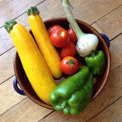 récolte courgette poivron tomates cébette