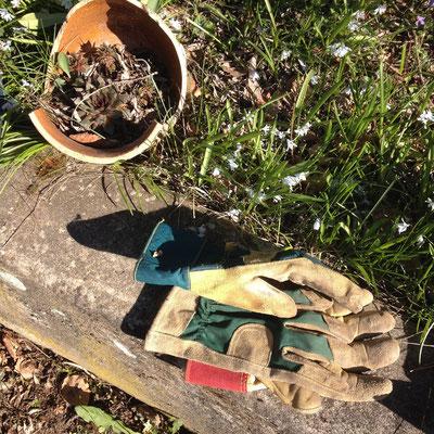 Slow Life, jardin, Gap, Hautes Alpes