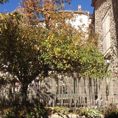Orpierre, vieil Orpierre, village médiéval, placette