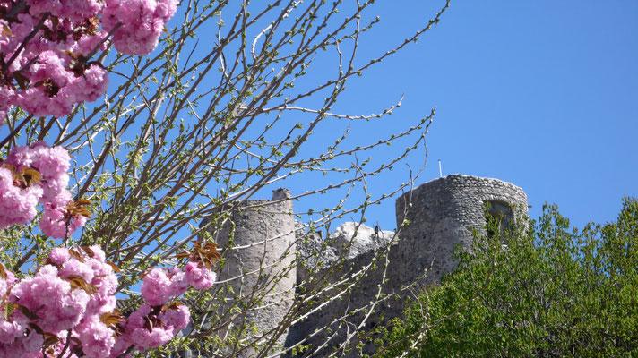 Tallard, vue, Château, Hautes Alpes