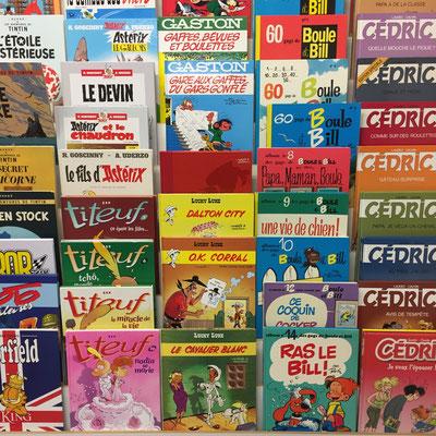 La Nouvelle Librairie, livres, occasion, neuf, Gap, Hautes-Alpes