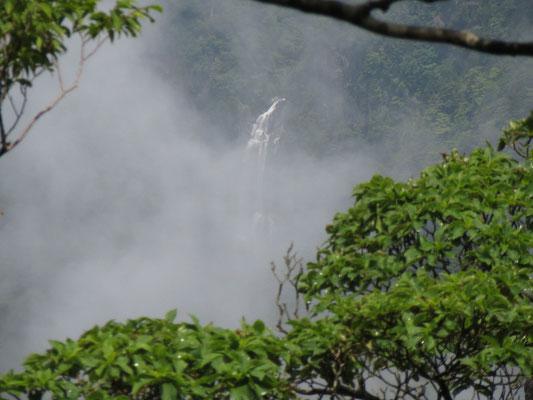 遠くの滝が霧に見え隠れする姿は幻想的でとても美しいです。