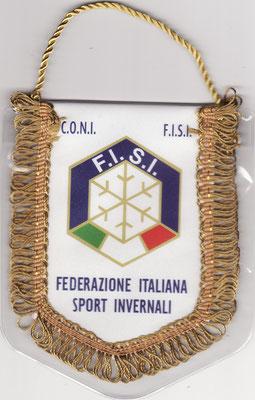 FEDERACION ITALIANA DE DEPORTES INVERNALES