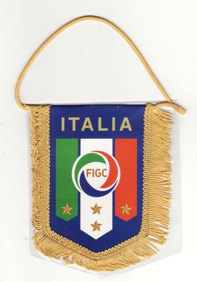 FEDERACION ITALIANA DE FUTBOL