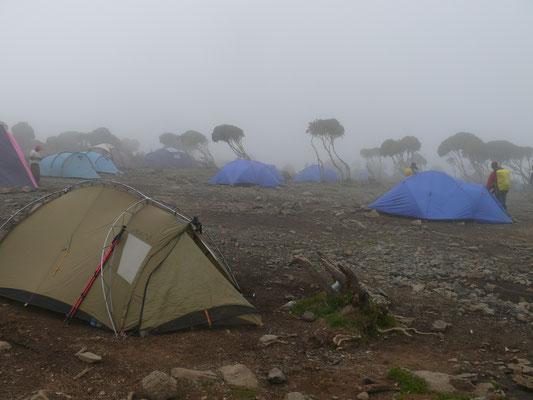 New Shira Camp auf 3845 m Höhe