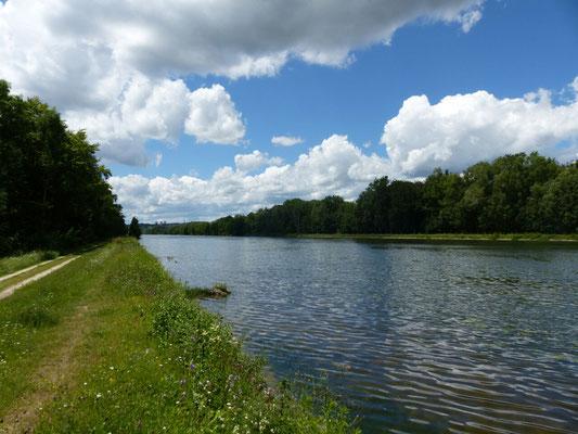Donau bei Ulm