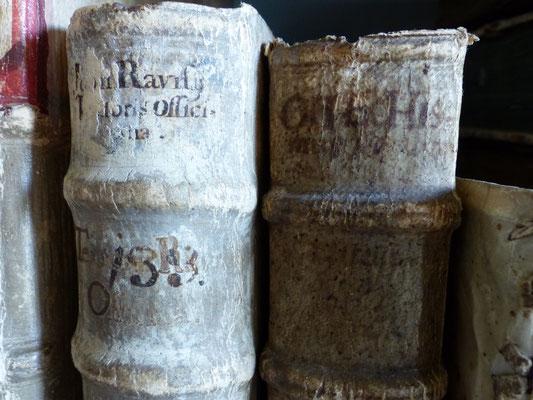 uralte Bücher in der Klosterbibliothek Wiblingen