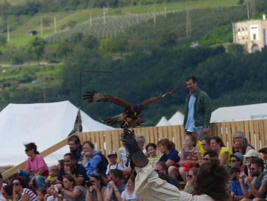 Ritterfest in Schluderns im Vinschgau