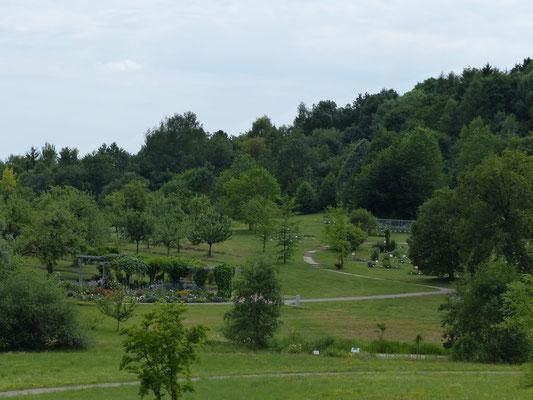 Botanischer Garten von Ulm
