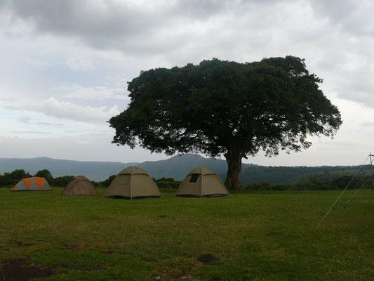 Zeltplatz im Ngorongoro Krater