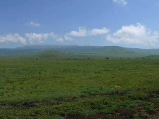im Ngorongoro Krater