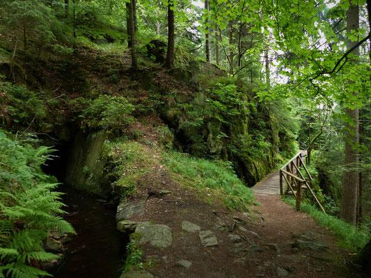 """entlang des """"Grüne Grabens"""""""