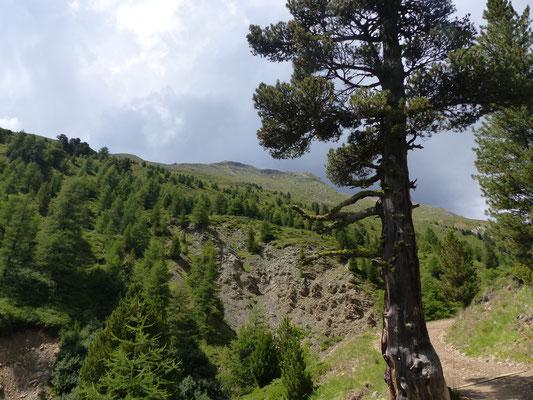 Wanderung zur Oberetteshütte ...