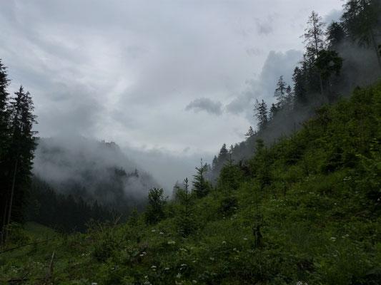 Panoramawanderweg Hinterwildalpen