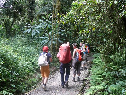 auf der Machame Route zum Kilimanscharo