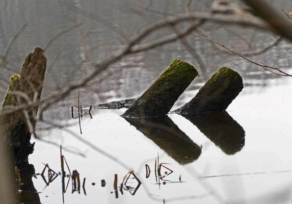 Foto: ingafoto.de