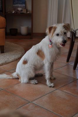Ella (10 Monate)