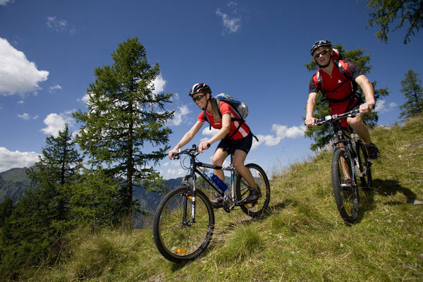 Sport - Mountain bike