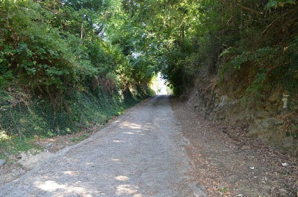 Strada di accesso al B&B
