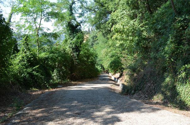 Strada di accesso al BnB