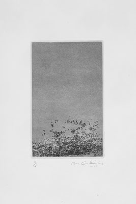 Aquatinte, 11 x 18 cm