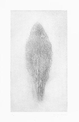 Aquatinte, 45 x 25 cm