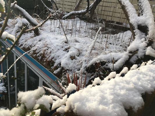 ガーデン 広島
