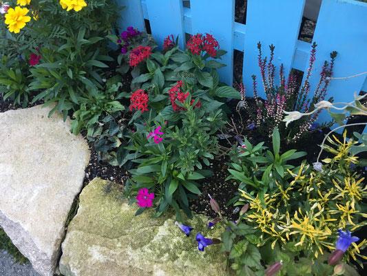 かわいい花壇 広島 廿日市 大竹市