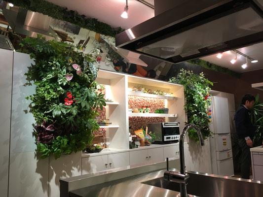 番組製作協力 テレビ新広島 壁面緑化 園芸装飾 緑化装飾