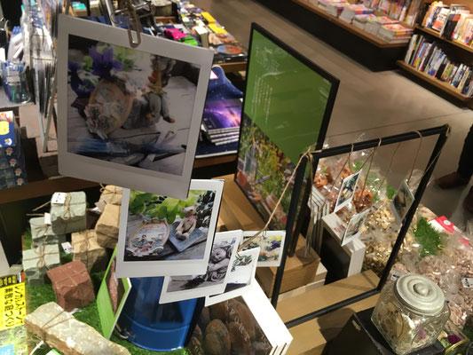 LECT 蔦屋書店 本 私の庭 庭 ガーデン フェア 石 砂利 広島 ガーデニング 廿日市 外構 エクステリア