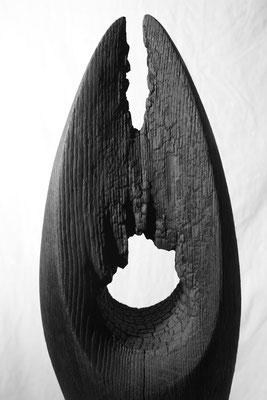 Holz gebrannt 55 x 22 cm