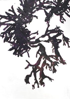 Droog wier    aquarel op geprepareerd textiel  100 x 70