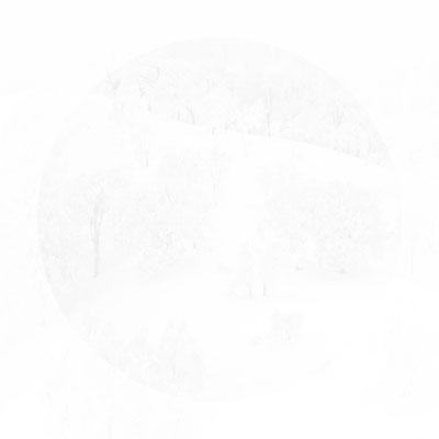 明るい円 Bright Circle【gianluca-tristo-ZRvDj87iAkk-unsplash】 2019