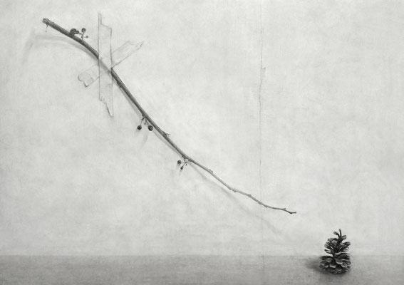 枝と松ぼっくり Branches and Pine Cone 2008