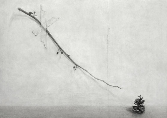 枝と松ぼっくり Branches and Pine Cones 2007