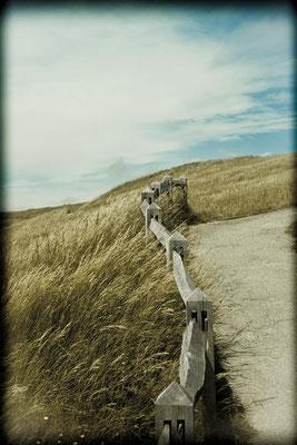 Kirsten: Beachy Head Landscape