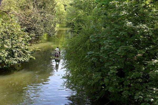 Peter: Boat trip in Oxford ooc